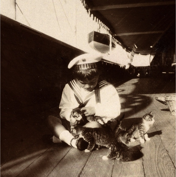 Alyosha and kittens