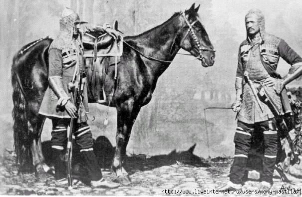 Circassian_horse