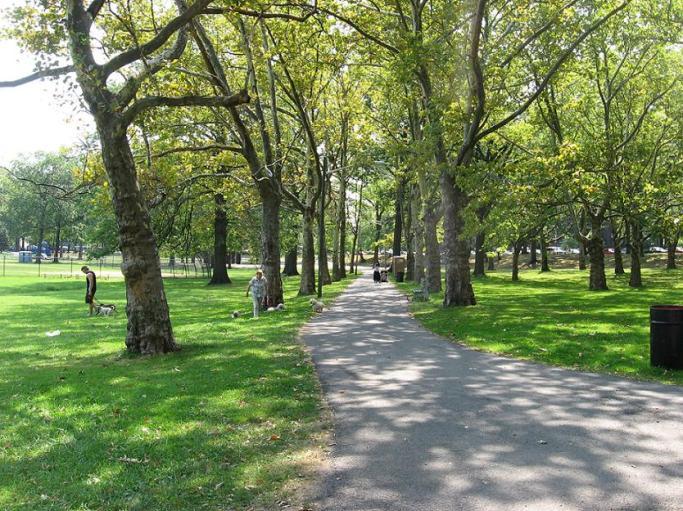 ivyhillpark