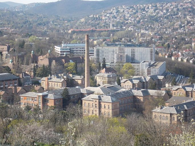Kis-Sváb_Hill_Protection_Area._View_to_János_Hospital._-_Budapest