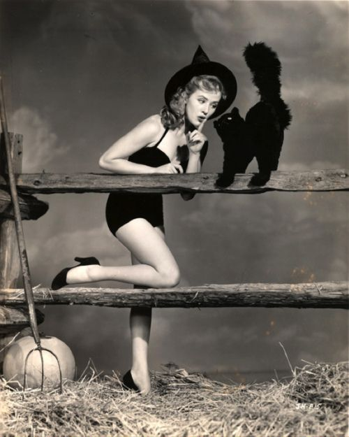 vintage-witch-fence