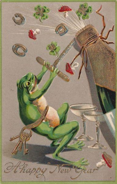 frog-nye